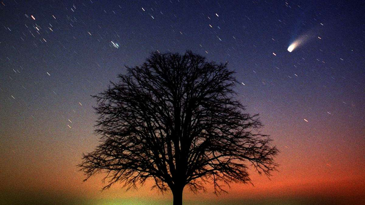 Komet Neowise Heute Sachsen