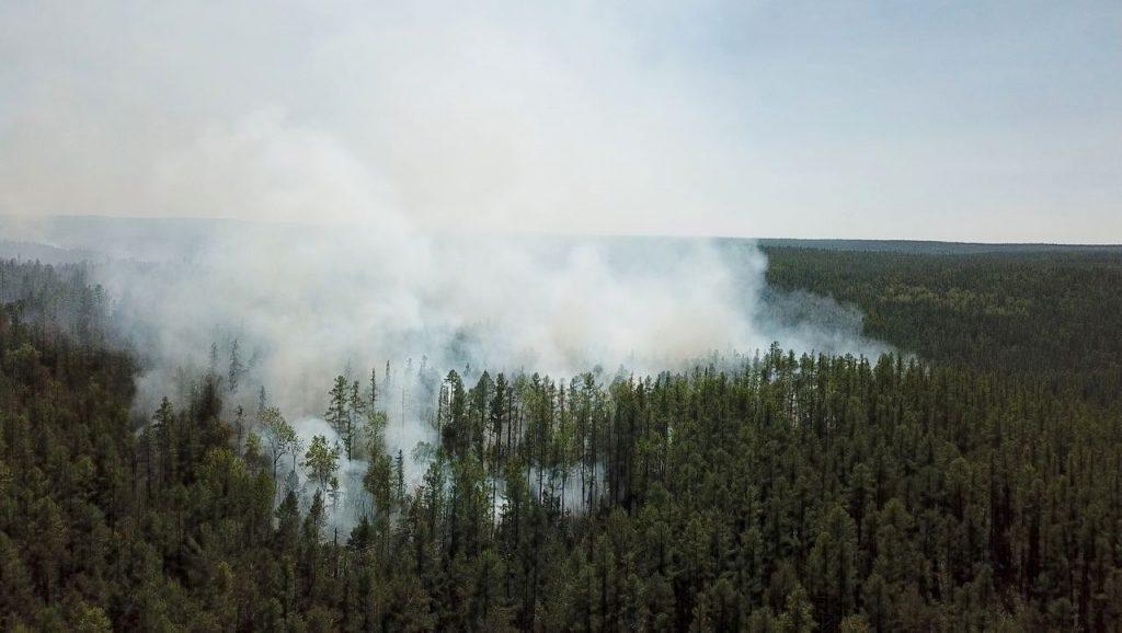 Sibirische Hitzewelle: Der Klimawandel macht Rekordtemperaturen in der Arktis 600-mal wahrscheinlicher