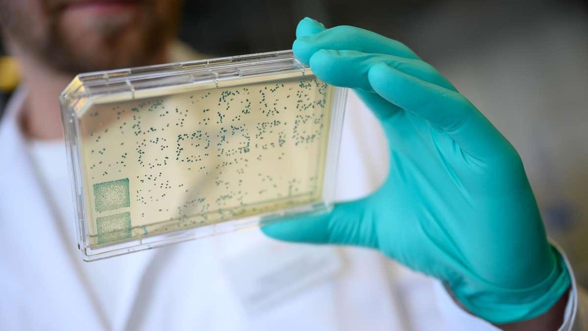 Coronavirus: Durchbruch!  Forscher entdecken den Ursprung von Sars-CoV-2 - und haben jetzt eine Frage