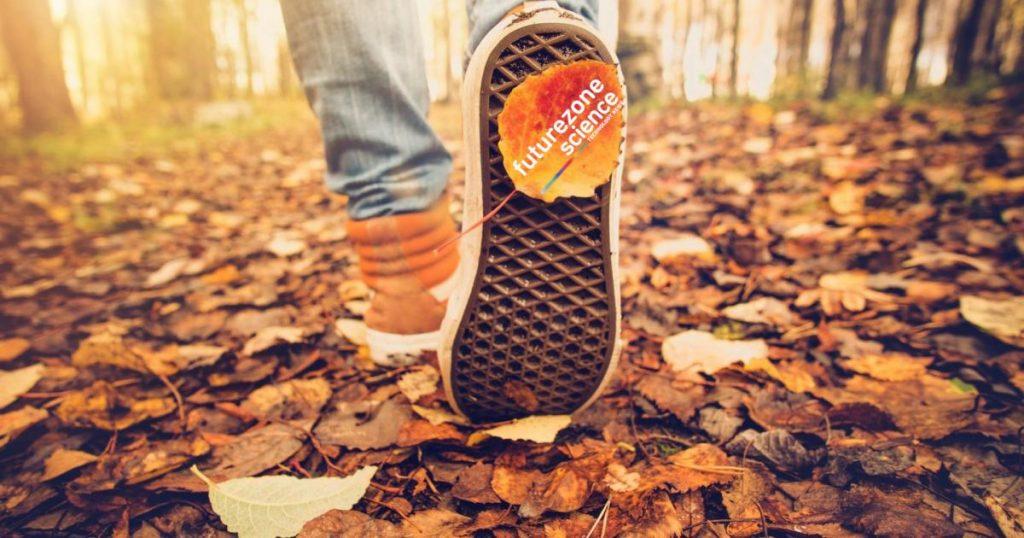 Schuhsohle mit Sensoren, die von Parkinson-Steifheit befreit sind