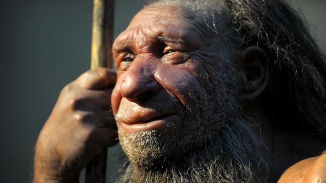 Empfindlichkeit gegenüber Covid-19: Das Neandertaler-Genom könnte ernsthafte Kurse fördern - Wissen