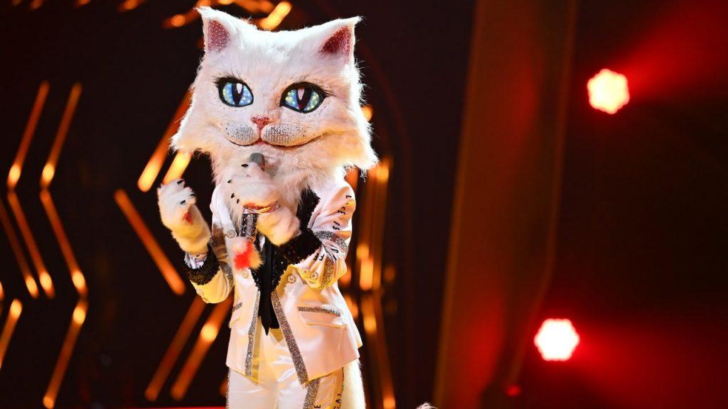 """""""Masked Singer"""": Diese Katze singt seit mehr als 50 Jahren - peinlich für Rae Garvey - TV"""