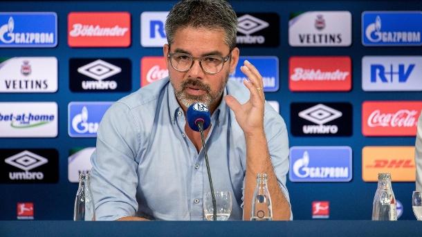 Hoffnungsträger: David Wagner bei der Präsentation auf Schalke im Juni 2019 (Quelle: imago images)