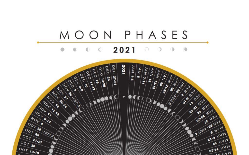 Rosa Mond 2021