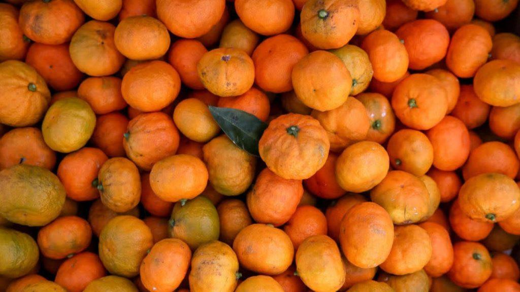 Vier Thriftstars verschlingen in 30 Minuten 66 Pfund Orangen, vermeiden Sie Übergepäckgebühren