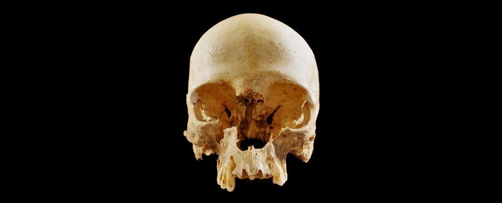 Wie kam dieser Schädel alleine in eine Höhle in Italien?  Wir haben endlich eine Antwort