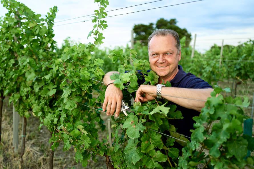 """Österreich """"eines der spannendsten Länder Europas"""" für Orangenweine"""