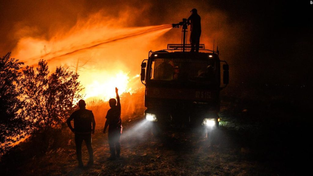 """Waldbrände in der Türkei: """"Tiere brennen"""", sagen verwüstete Bauern, als Waldbrände die Türkei fegen"""
