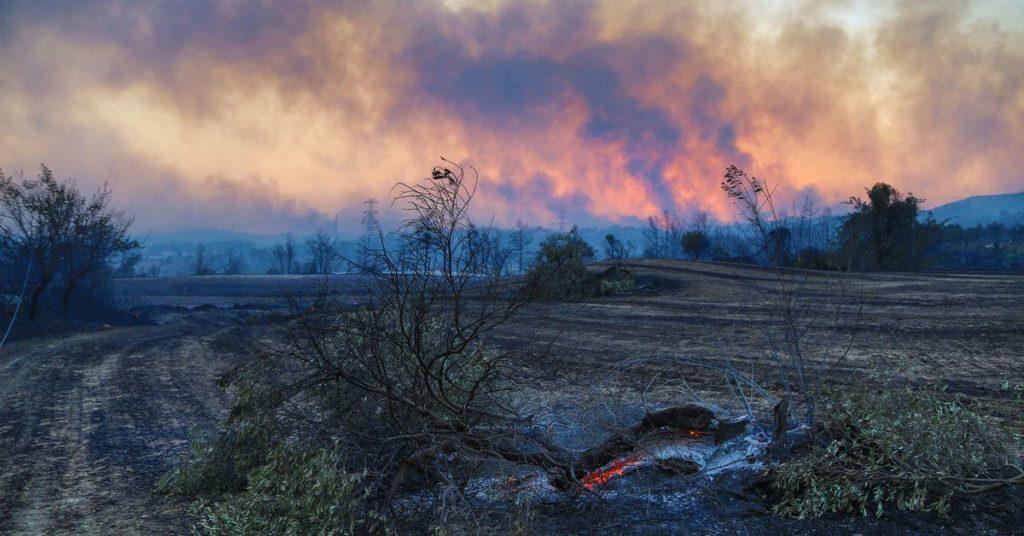 Anwohner fliehen, als Winde massive Waldbrände in der Südtürkei schüren