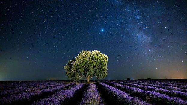"""Die langfristige Suche nach dem Aufbau einer """"galaktischen Zivilisation"""""""