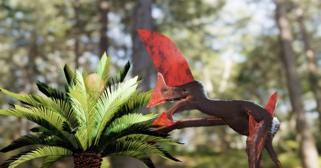 Polizeirazzia deckt prähistorisches fliegendes Reptil in bemerkenswertem Zustand auf