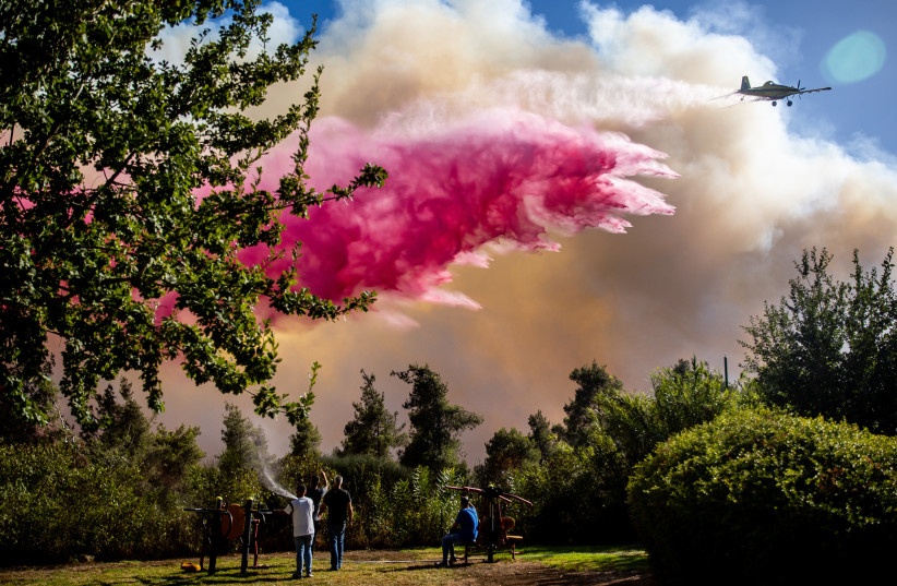 Israel ruft bei größtem Feuer seit dem Feuer im Carmel um internationale Hilfe