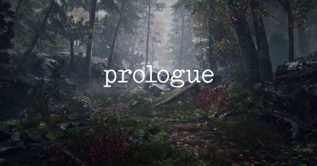 Sieh dir an, wie PlayerUnknown Prologue beschreibt, ein eigenes Post-PUBG-Projekt