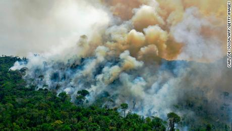 Wie Brasiliens Angst vor dem Verlust des Amazonas die Forstpolitik von Bolsonaro leitet